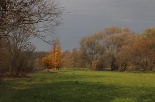 Středověká hatěná cesta u Petřvaldíku