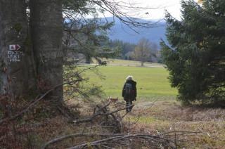 Značená odbočka k vyhlídce vychází z lesa na louku.