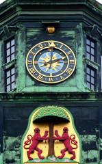 Proč zrovna kombinace lva a hrušně? Poněvadž, dle jedné z hypotéz, je název města odvozen od výrazu die Birne, tedy hruška.