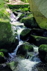 Kamenité řečiště Šembery