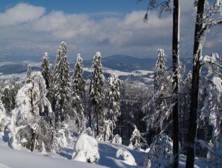 Bukovohorská hornatina pod sněhovou přikrývkou