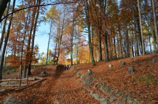 Cesta na vrchol Bradla