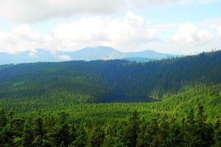 Výhled z rozhledny na Čertovo jezero, v pozadí Velký Javor