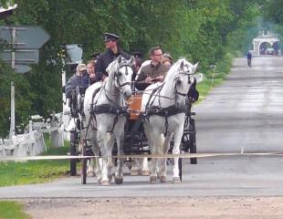 Projížďka kočárem (foto dr. Z. Frühbauer)